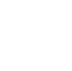 Cornell University Logo - White