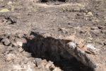 Lava Tube (Mojave Desert)